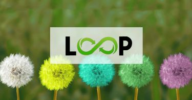 Loop surveys logo superimposed on different colored dandillions