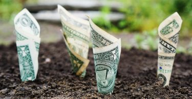 Paypal money in soil