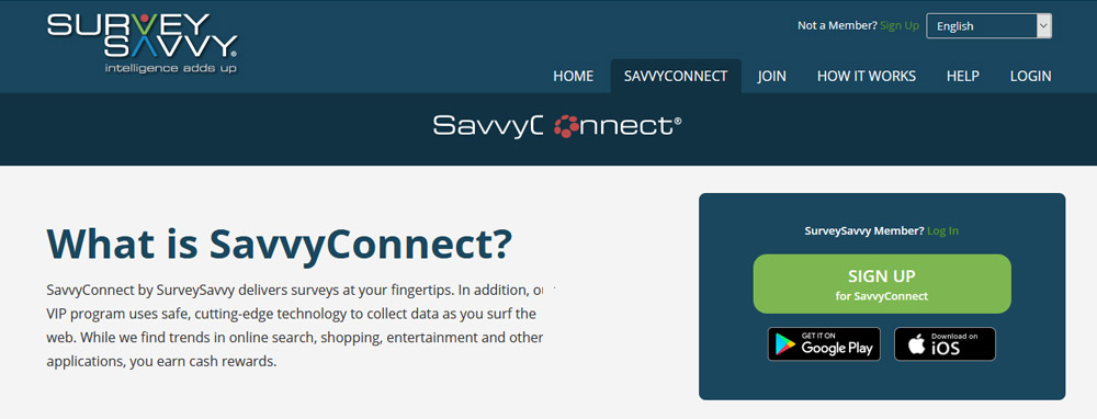SavvyConnect Website