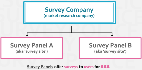 Survey company flow chart
