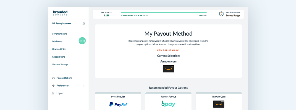 Branded Surveys payment options