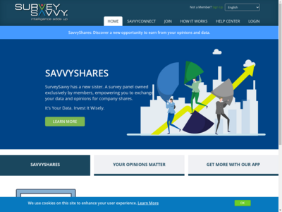 surveysavvy website
